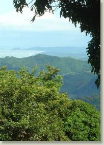 Vida Natural Costa Rica