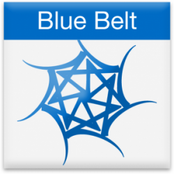 Blue Belt Icon